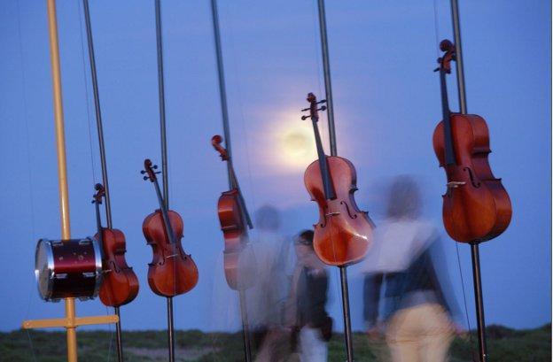 Pierre Sauvageot: Harmonic Fields