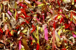 Karen Finley: Ribbon Gate