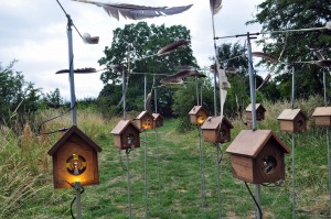 Jony Easterby: Remnant Ecologies / Do Not Feed the Birds